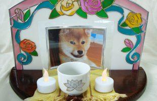 ペットのお仏壇 オープンステージ